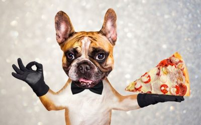 Pizza For Paws Event Gives $2385 To Humane Indiana